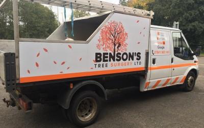 Benson's Tree Surgery 1